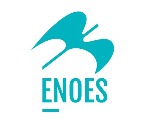 logo Enoes